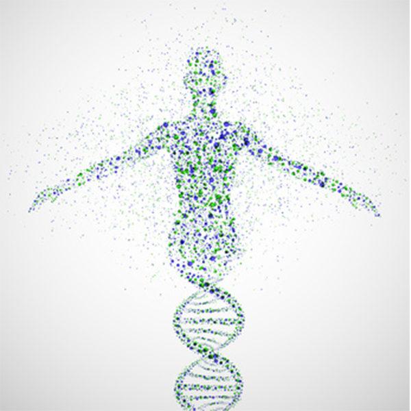 Human Anatomy, Physiology & Biochemistry